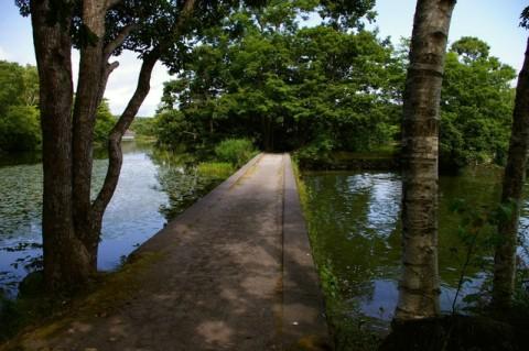 大沼公園7