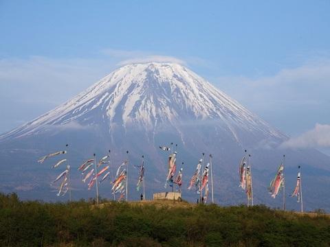 富士山こいのぼり