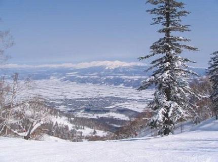 富良野スキー場1仮