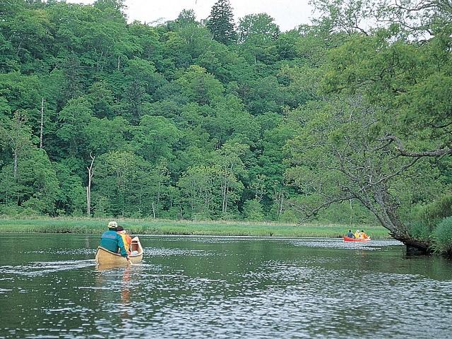 Kushiro River Canoes