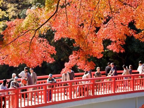 07紅葉と待月橋