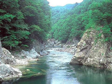 諏訪峡 夏(みなかみ町)