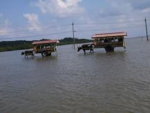 Yubu Island