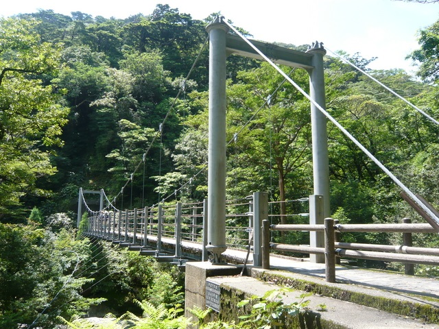 Yaksugi Land/Mt. Tachudake