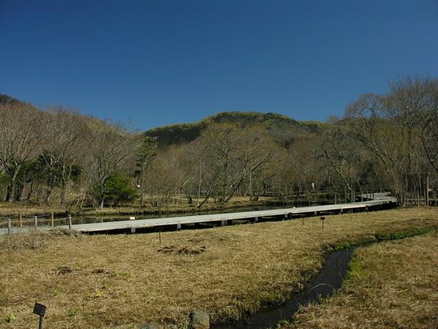 Hakone Hygrophyte Garden