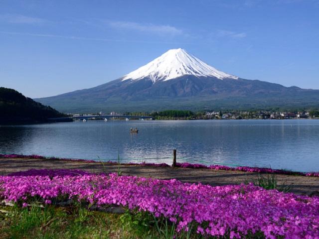 Mount Fuji Area