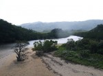 Fukido River Mangrove