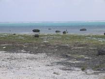 Shiraho Shore