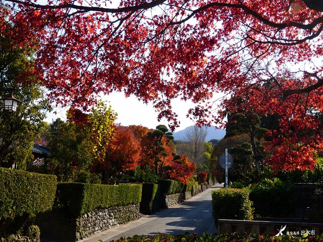 Izumi Samurai Residences