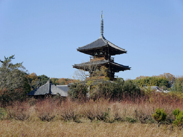 Hoki-ji Temple ,Horin-ji Temple