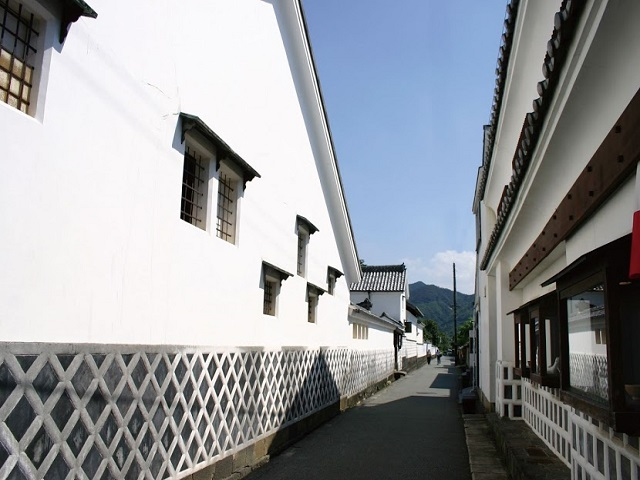 Hagi Castle town area